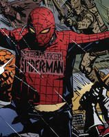 all-those-over-weight-guys-in-bad-spiderman-costumes-remind-_c616d8c3490a8f94a96aa0af9293888a